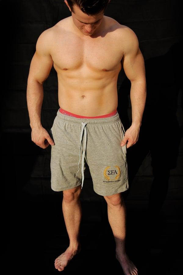 Elite Shorts - Grey - Elite Fitness Apparel