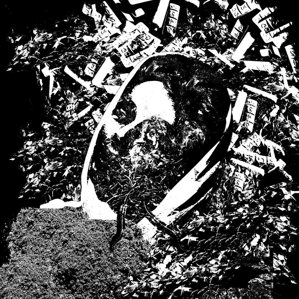 "Image of Languish ""Extinction"" CS"