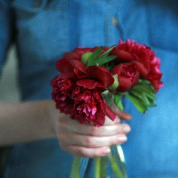 Image of ein paar Blumen