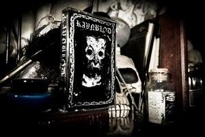 Image of 051 - Ravnblod - Some Sins