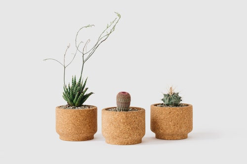 Image of Modern Cork Planters