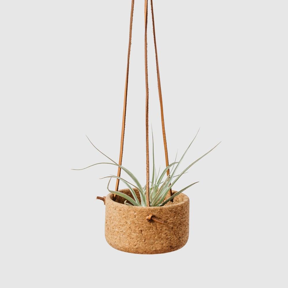 Melanie Abrantes Small Hanging Planter