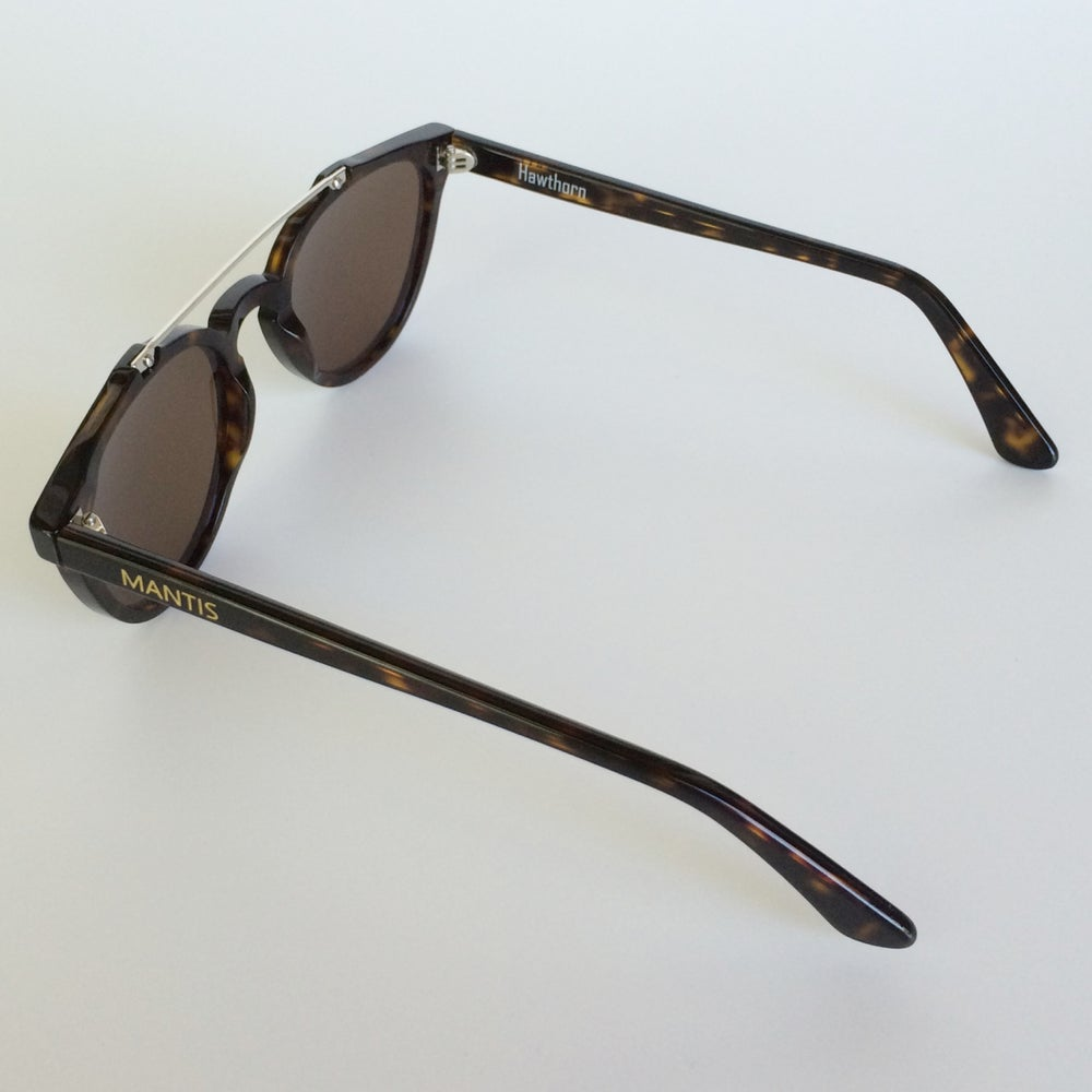 Image of Hawthorn - Tortoise NYC with Cision lenses