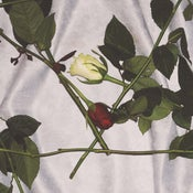 Image of ALT22: Chain Of Flowers - Chain Of Flowers LP *PRE-ORDER*