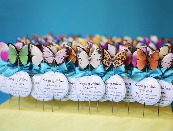 Image of Alfileres mariposas variadas