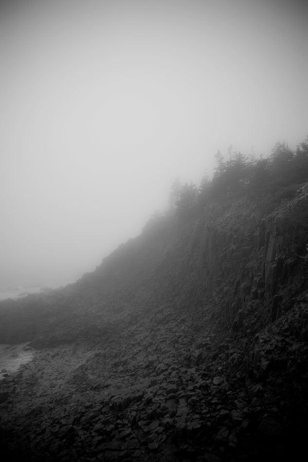 Image of Sea Coast