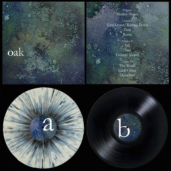 "Image of 'Oak' 12"" LP"