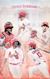 Image of St. Louis Cardinals