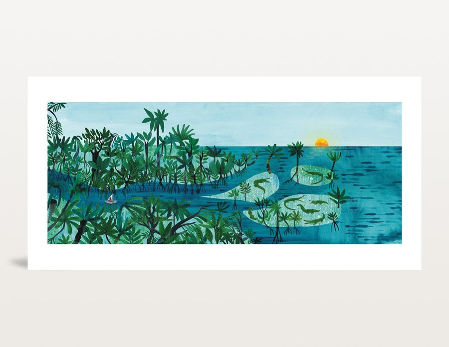Image of Mangroves