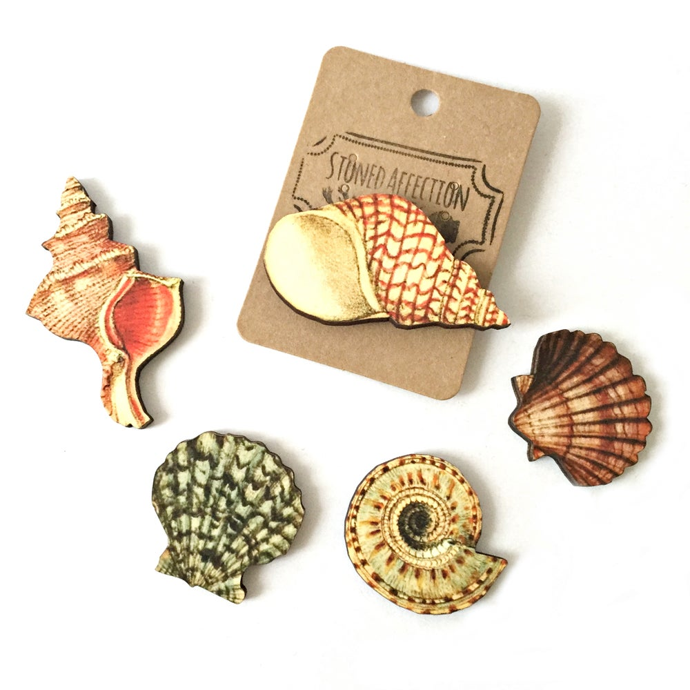 Image of Seashell Wooden Brooch Pin (assorted) <B><BR>WAS £6.50, NOW