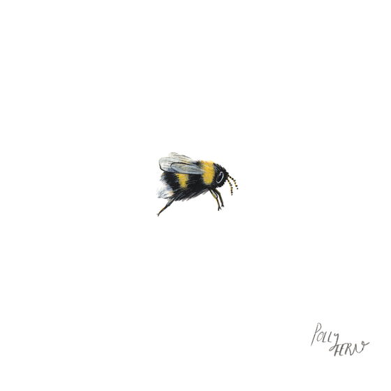 Image of Original Bumble bee painting