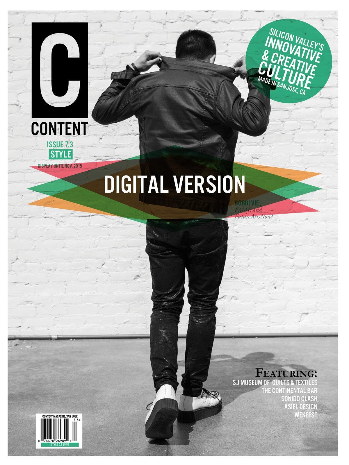 Image of Style 7.3 (Digital)