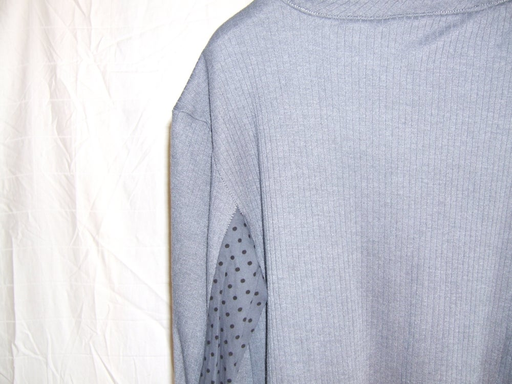 Image of Paneled Longsleeve