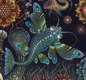 """Image of 'STAR FISH' ~ 20 x 20"""" Signed Open Edition"""