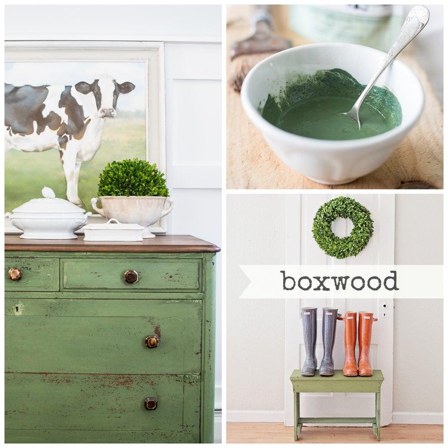 Image of Boxwood