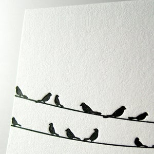 Image of Sympathy Birds