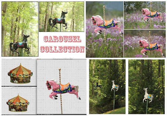 Image of Carousel Collection