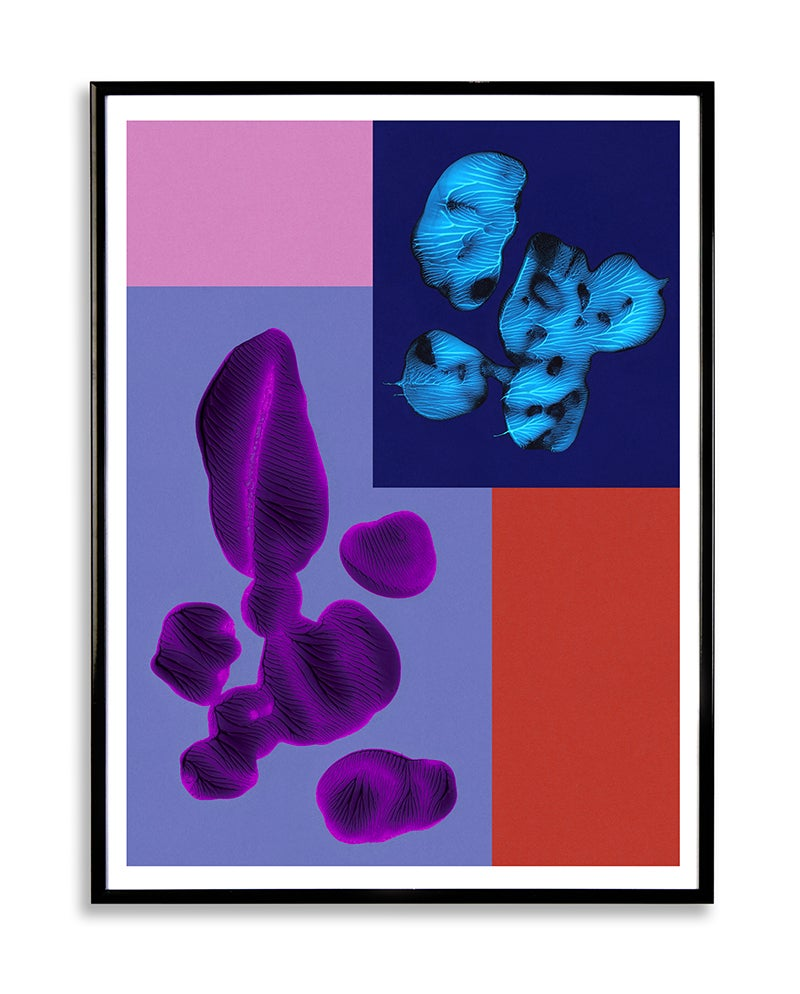 Image of PAINT 1