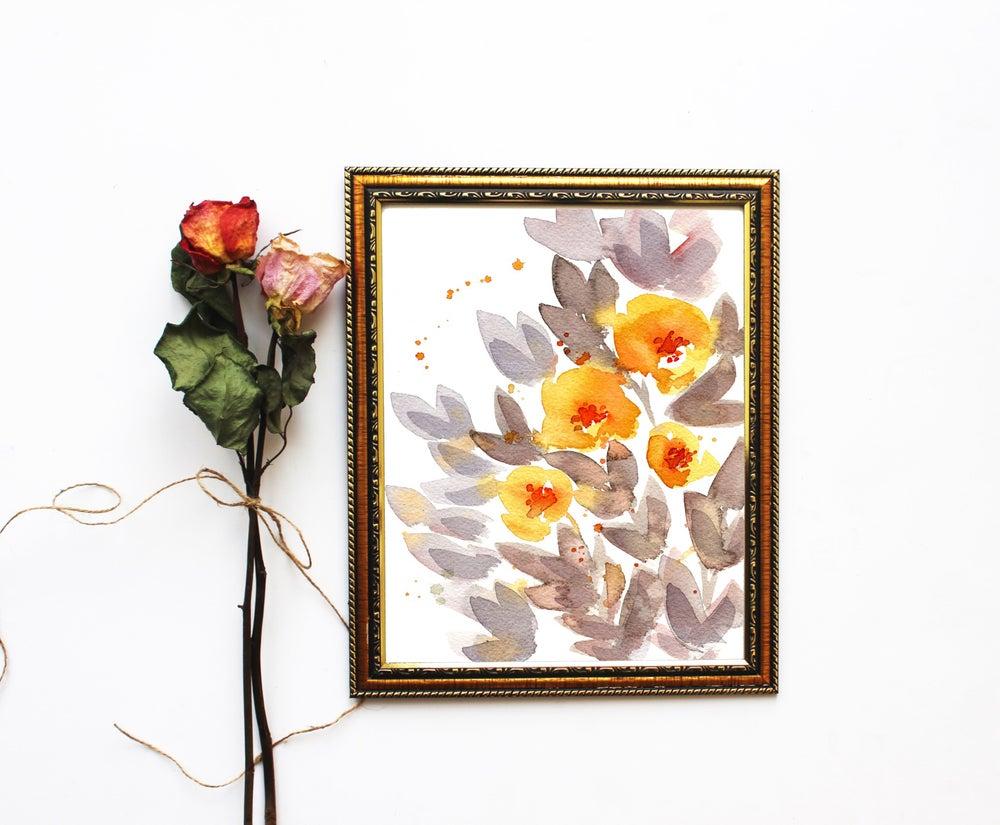 Image of Orange poppies
