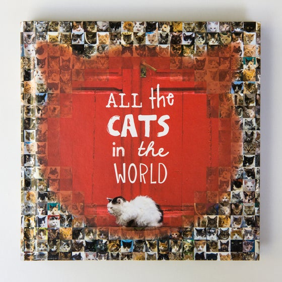 Image of All the Cats in the World (Signed by Jesse Hunter)