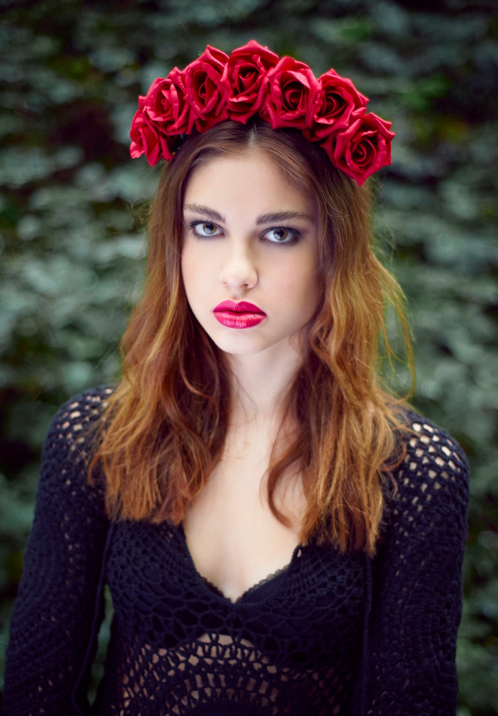 Image of Blooming Rose Crown Jessamine