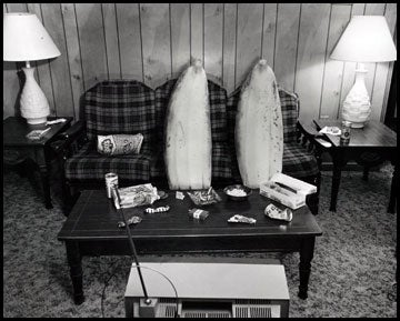 Image of Couch Bananas