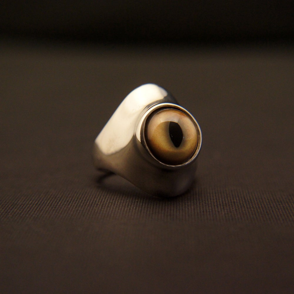 Image of Bobcat Eye
