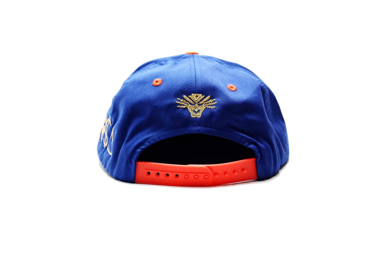 Image of TI$A METS CAP
