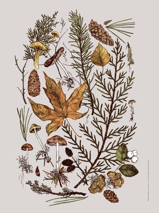 Image of Woodland Bouquet Art Print