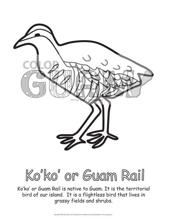 Image of Ko'ko