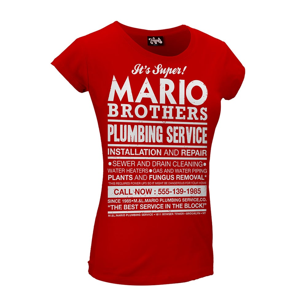 Image of Mario Bros plumbing service {f}