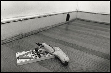 Image of A Better Banana Trap