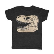 Image of KIDS - Trex Fossil