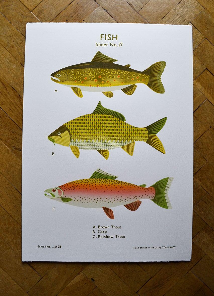 Fish school chart theboyfrost for Big fish screen printing
