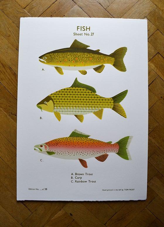 Image of Fish School Chart