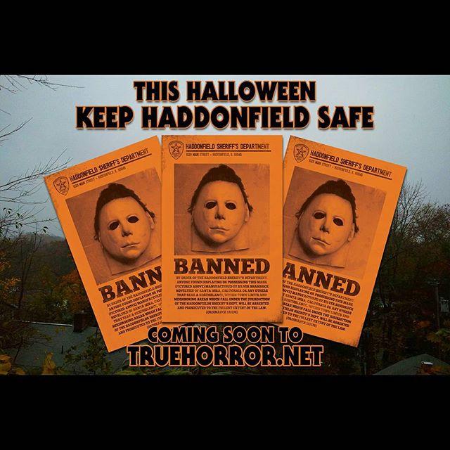 Image of Ordinance 103178 : Keep Haddonfield Safe print (orange variant)