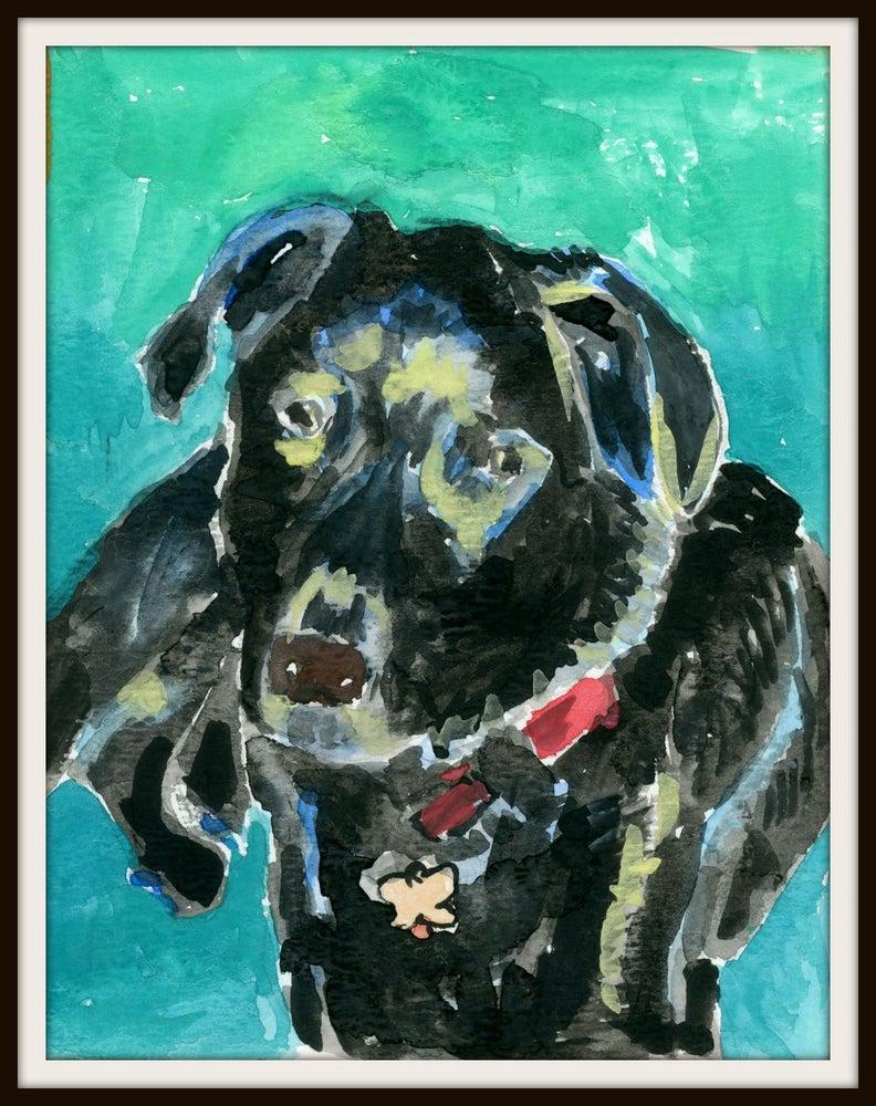 Image of Animal Portrait