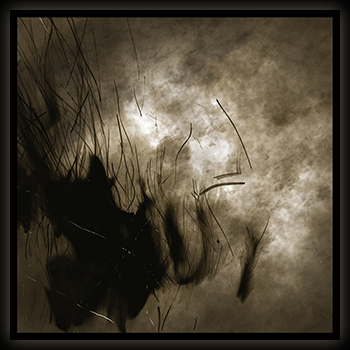 Image of cycle of naught (200 limited, black Vinyl - Gatefold LP)
