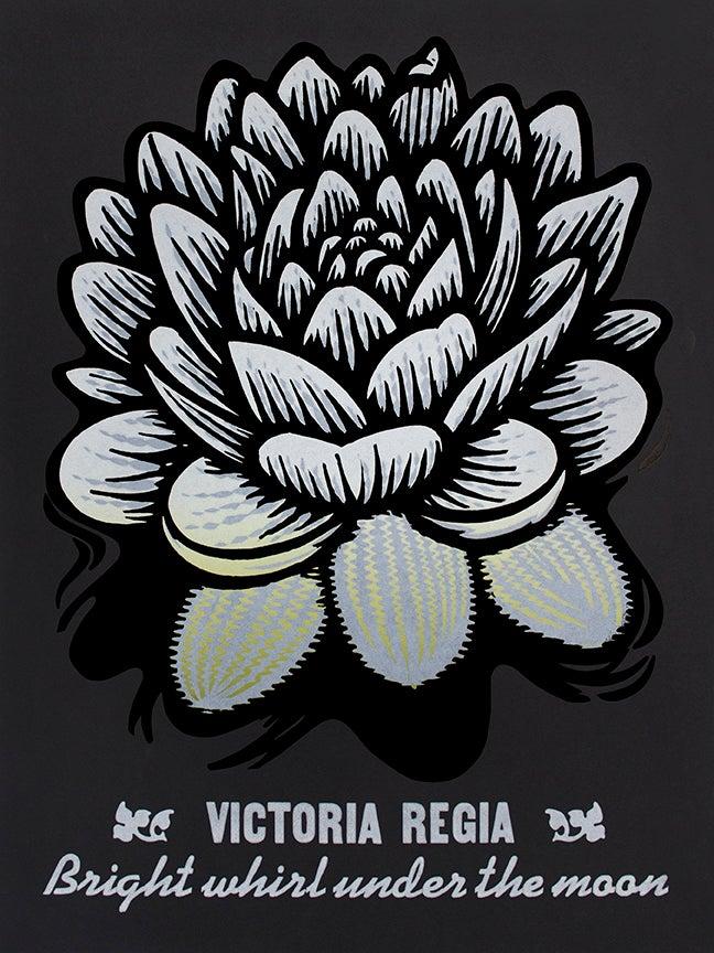 Image of Victoria Regia