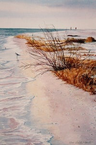 "Image of ""Tigertail Beach"" small size"