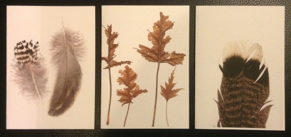 Image of Nature Gift Card Series - limited stock remaining