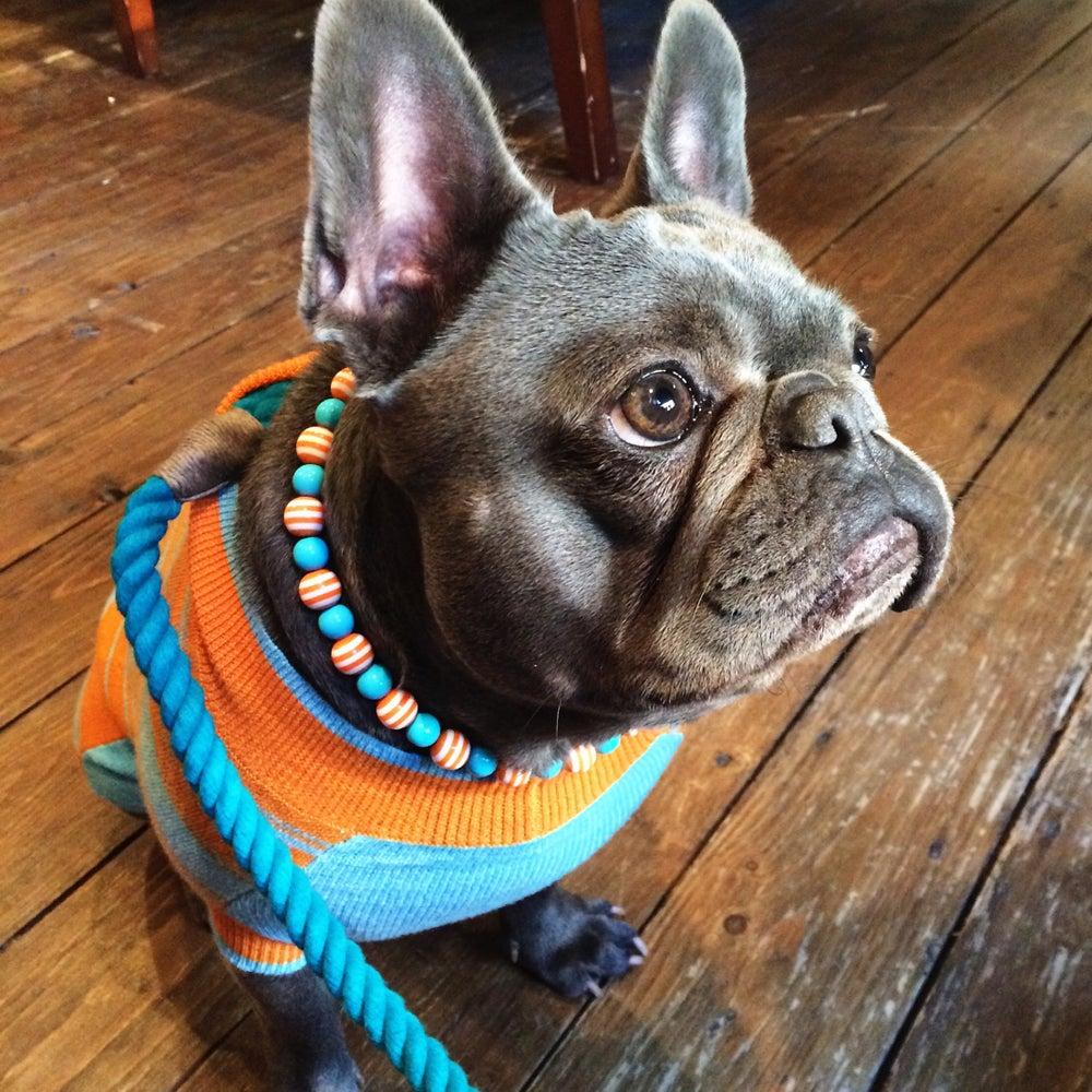 Image of Tangerine ~ Orange and Teal Beaded Dog Necklace