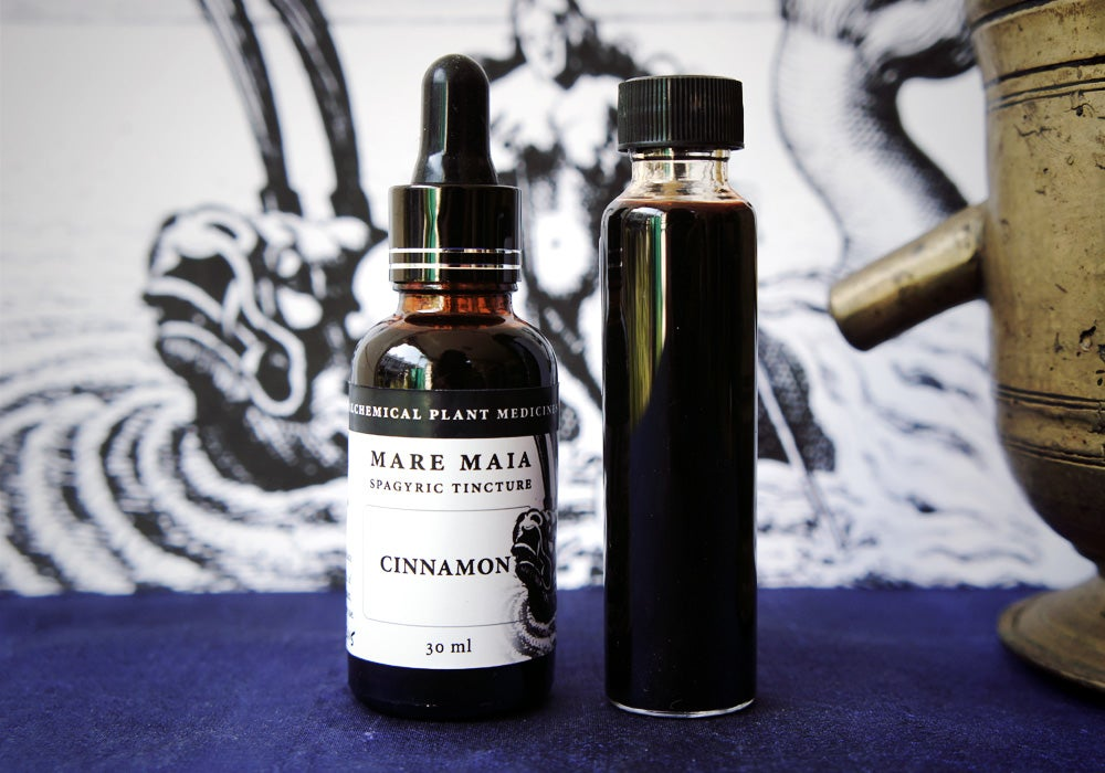 Image of CINNAMON spagyric tincture - alchemically enhanced plant extraction