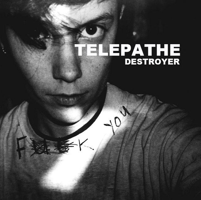 "Image of TELEPATHE ""Destroyer"" YC15"