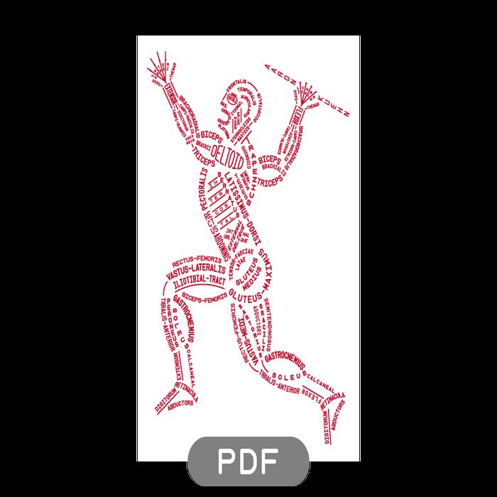 Image of Muscular Typogram - PDF File