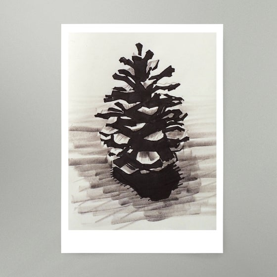Image of By Hand : Pine Cone Art Print