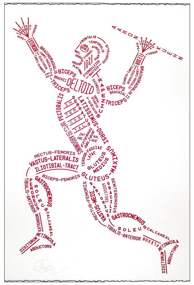 aaron kuehn muscular typogram print Gallifreyan Doctor Who doctor who clip art free