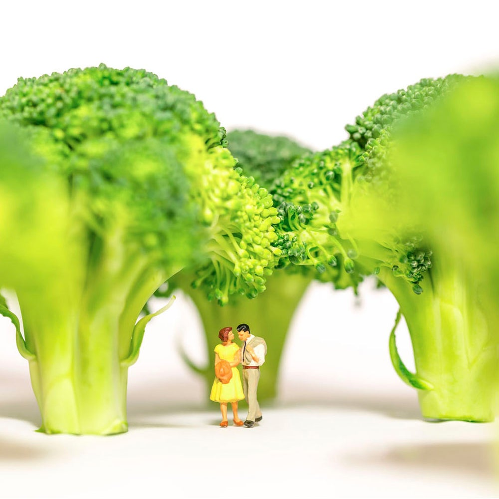 Image of Øystein Dypedal - Broccoli Forrest