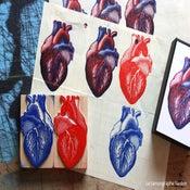 Image of Coeur humain.