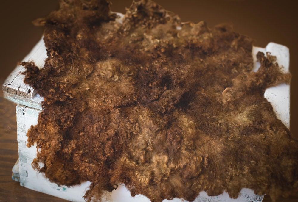 Image of Nest of Curls Blanket - Chocolate Dream